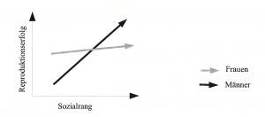Sozialer Status und Reproduktionserfolg nach Voland 2000 S. 268