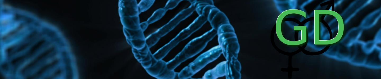 DNA - Gender-Diskurs